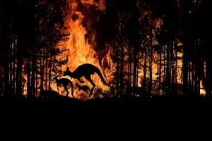 Bushfires-Flame Retardant- NorthCoast Banners